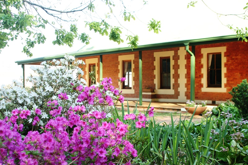 Midlands meander self catering garden